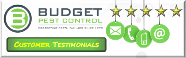 Pest control customer feedback, Customer reviews pest control perth