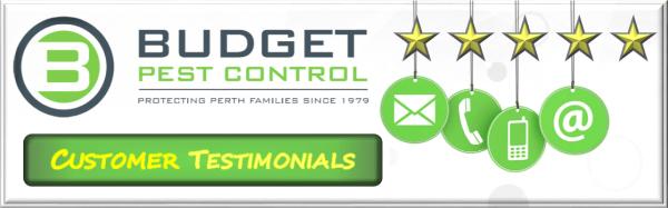 Pest control customer feedback, Customer reviews pest control perth