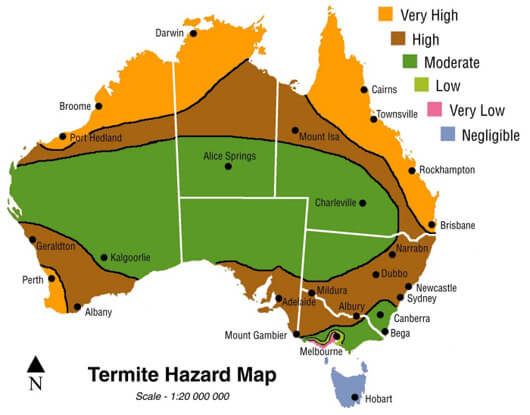 Termite population density, Termite Pest Control