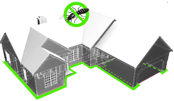 Termite Barrier Treatments Perth